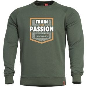 Pentagon Hawk Sweater TP Camo Green